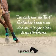 Die 76 Besten Bilder Von Equicrown Sprüche Für Pferdefans In 2018