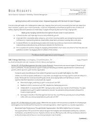 Sample Resume Oil And Gas Industry Free Resume Example And