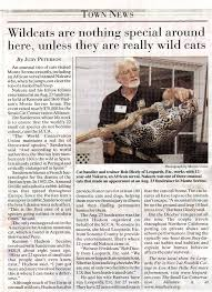 A Newspaper Article Wild Cat Education And Conservation Fund Newspaper Article