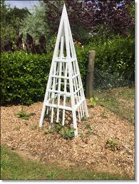 vegetable garden obelisk bright