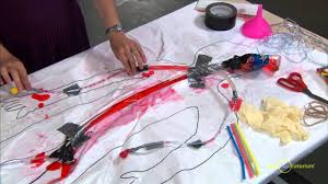 engineering a model circulatory system science snack activity exploratorium you