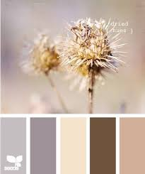 to match our chocolate brown couch? - Click image to find more Home Decor  Pinterest
