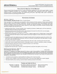 Executive Resume Templates Word Free Download Resume Templates