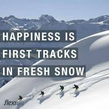 Skiing Quotes Custom 48 Best Ski Images On Pinterest Ski Skiing And Skiing Quotes