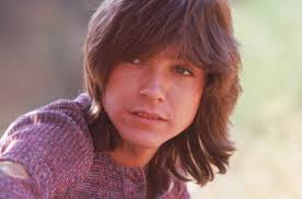 Image result for david cassidy