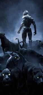 Black Panther Wallpapers on WallpaperDog
