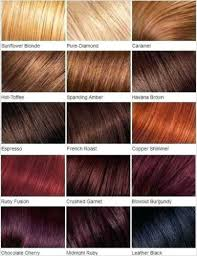 Ebony Black Hair Color Dark Blonde Shades Chart Outoand