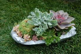 Garden Rock Garden Ideas For Small Gardens Landscaping Small Rock