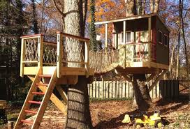 tree house plans for two trees. Brilliant Trees 7 Treehouses That Will Make You Green With Envy Regarding Tree House  Plans Two Trees And For E