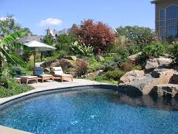 Small Picture Backyard Landscaping Ideas Swimming Pool Design Backyard Pool