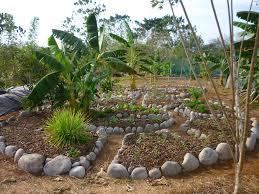 Herb Garden Making An Herb Garden The Design Part Ii