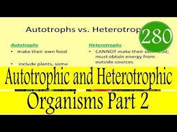 Autotrophic And Heterotrophic Organisms Part 2 In Hindi Urdu