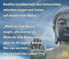 Buddha Sprüche Liebe Italiaansinschoonhoven