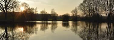 Der Staudenfischereiverein Fischen In Und Um Langenneufnach