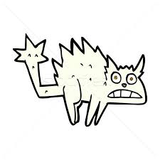 Image result for cartoon illustration of a frightened cat