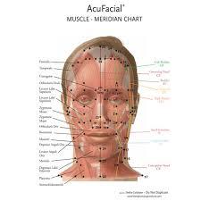 Acupressure Face Chart Krishnas Wheel A Complete Acupressure System The Head