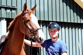 Jonge Springpaarden In Etalage Bij Wolden Cup De Wolden
