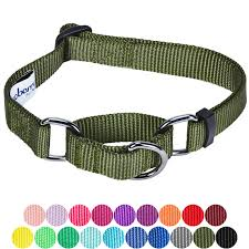 Blueberry Pet Collar Size Chart Large Collars For Dogs Blueberry Pet Classic Dog Collar Neck