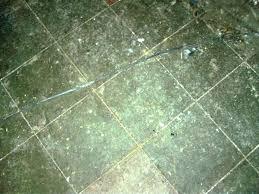 asbestos flooring floor tiles removal vinyl sheet flooring asbestos backing asbestos floor tiles broken do asbestos asbestos flooring