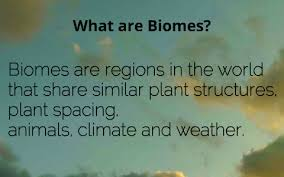What Are Biomes What Are Biomes By Aravind Rajiv J On Prezi