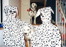 Image result for dalmatians dressed as pumpkins images