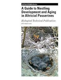 Pdf A Guide To Nestling Development And Aging In Altricial Passerines