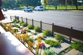 Small Picture Native and Drought Tolerant Landscaping by California Eco Design