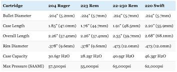 22 250 Vs 223 Vs 204 Ruger Vs 220 Swift Clash Of The Speed