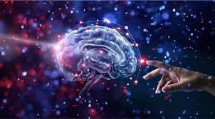 Hallan sorprendentes parecidos entre el cerebro humano y el universo