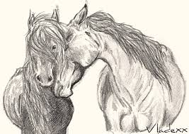 wild horse drawings in pencil. Interesting Wild Wild Horses By JordanHempstead  Throughout Horse Drawings In Pencil W