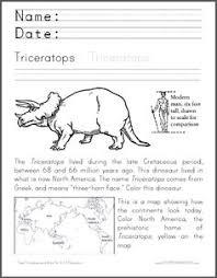 essay s example history