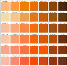 Orange Pantone Color Chart Pantone Colors In Orange In 2019 Pantone Colour Palettes