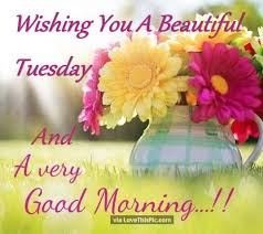 Tuesday Good Morning Quotes Best of Wishing You A Beautiful Tuesday And A Very Good Morning Good