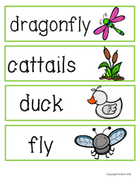 Pond Life Themed Pocket Chart Words And Beginning Sounds Clip Cards