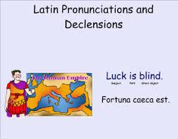Smart Exchange Usa Latin 1st Declension Noun Chart And