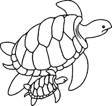 Small Picture Sea Turtle Outline Coloring Coloring Pages