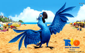 Angry Birds With Rio High Definition