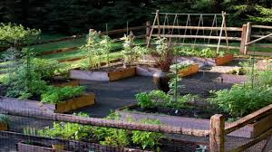 Small Picture backyard vegetable garden design YouTube