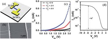 a schematic diagram and b fesem image of sns nanowire fet device a schematic diagram and b fesem image of sns nanowire fet device c i ds versus v ds plots measured at different v g values and d variation of i ds