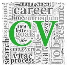 writing s resume Meg Murphy     Professional CV Writer