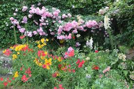 Small Picture 4 Tips for Designing Garden Colour Janna Schreier Garden Design