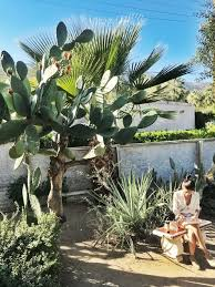 medium to large size of the huntington botanical gardens san marino california in southern for weddings