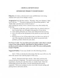 Essay Examples Ow To Write Critical Reflection Example Critique