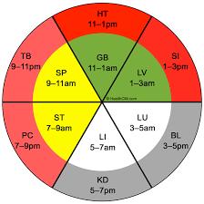 Foot Chinese Medicine Chart Organ Clock