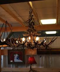 full size of deer antler lamps how to make light for mule chandelier porcupine