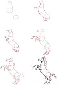 rearing horse drawing step by step. Contemporary Drawing How To Draw A Horse Rearing With Rearing Horse Drawing Step By Pinterest