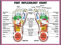 Foot Reflexology Chinese Medicine Meridian Acupressure And