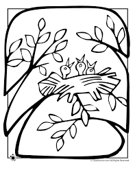 Small Picture Spring Birds Nest Coloring Page Woo Jr Kids Activities