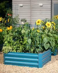 corrugated raised garden bed corrugated raised garden bed raised garden beds corrugated iron using cedar boards