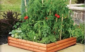 Small Picture Vegetable Garden Layout Plans Start Your Own Garden Plan Design
